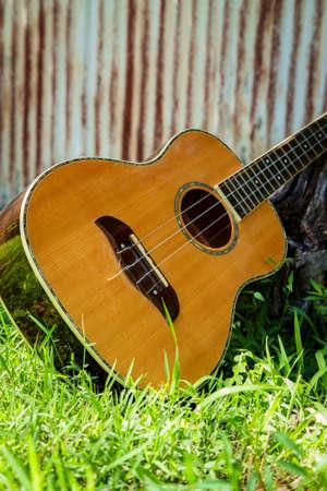 Acoustic baritone ukulele guitar leaning against stump in yard