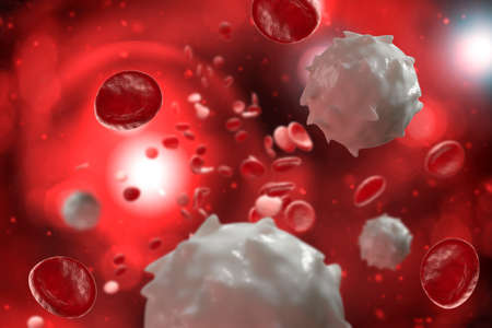 Healthy human red and white bloodcells macro science 3D illustration