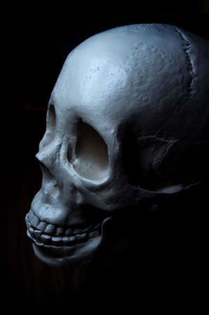 Terrifying angry halloween skull for October holiday background Foto de archivo