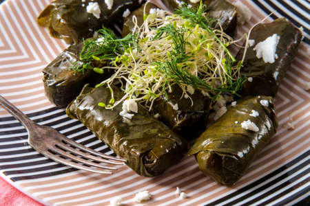 Armenian yaprak dolma, stuffed grape leaves appetizer Imagens