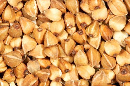 Seed of buckwheat. Close up