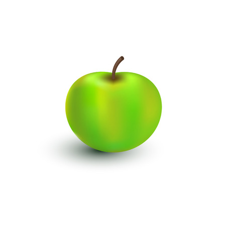green apple isolated: Illustration, vector, green apple isolated on white background. Illustration