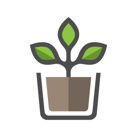 Plant in pot vector icon.