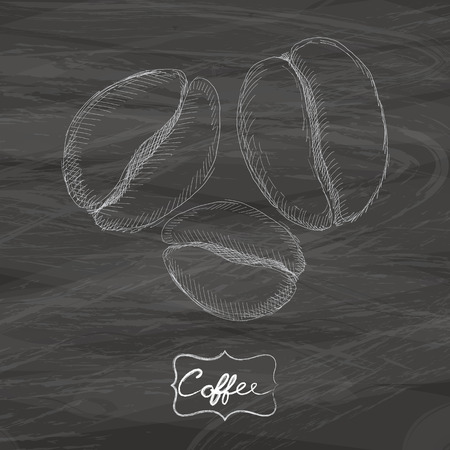 Coffee beans drawing with chalk on blackboard Vector