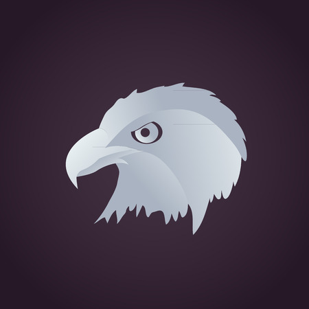 hawk head Vector