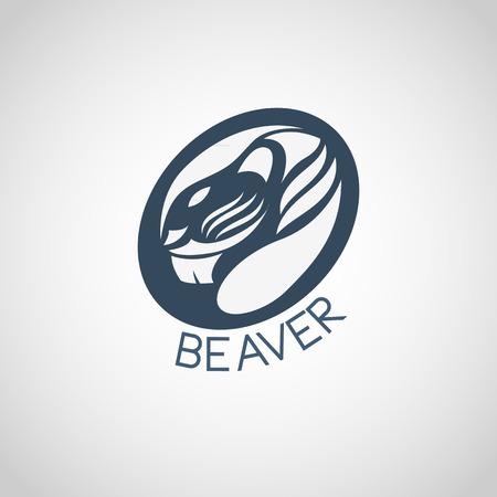 opossum: beaver vector Illustration