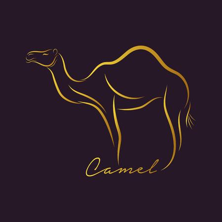 Camel logo vector Çizim