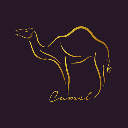 Camel-Logo Vektor Standard-Bild - 38635024