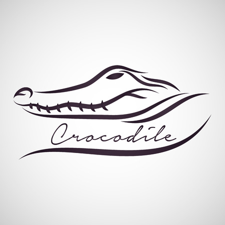 Crocodile vector Ilustração