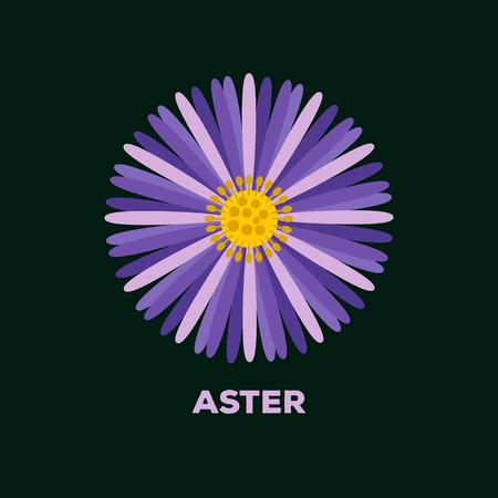 aster: Aster flower logo vector
