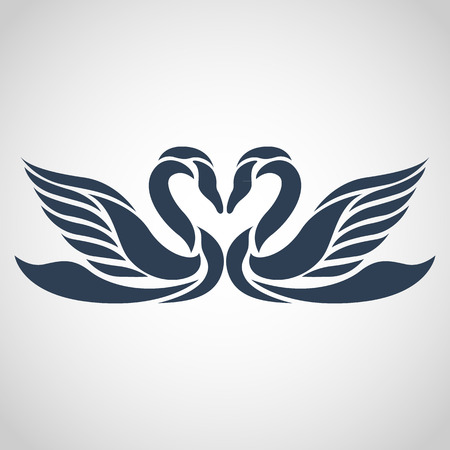 白鳥ベクトル