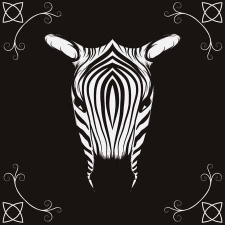 t�te de z�bre: Zebra t�te illustration