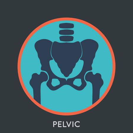 pelvic: PELVIC Illustration