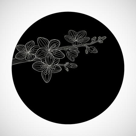asian gardening: Branch of cherry blossom in black circle