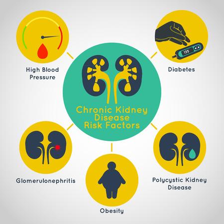 Facteurs de risque de maladie rénale chronique vecteur icône infographie Banque d'images - 85433398