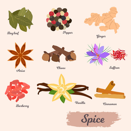 vector icon set - spices and condiments on a white background