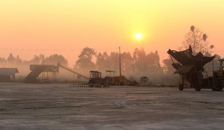establishment: Sunrise at agriproduct processing establishment