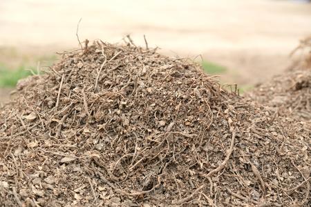 establishment: cassava waste from agriproduct processing establishment