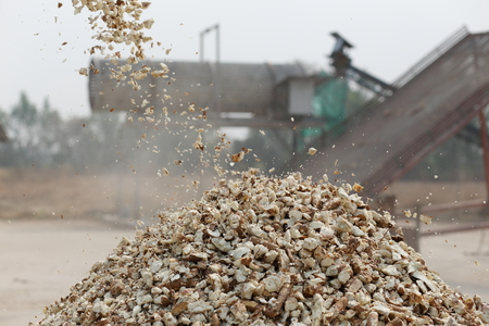 waste products: cassava agricultural product processing for make it dry