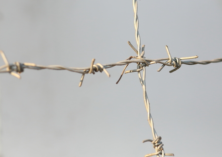 barb wire isolated: barbed wire for background Stock Photo
