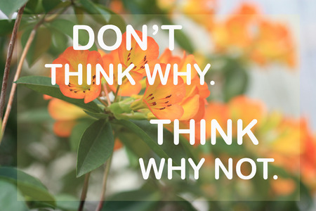 why not: Dont think why. Think why not. on orange flower background