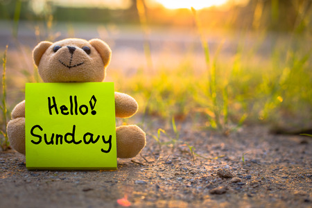 Hello Sunday on sticky note with teddy bear on nature background