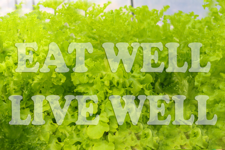 EAT GOOD FEEL GOOD, EAT MORE GREEN, EAT WELL LIVE WELL, YOU ARE WHAT YOU EAT words on hydroponics green vegetable background.