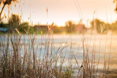 Sunset, sunrise natural background 版權商用圖片