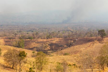 Fire in mountain forest. Aerial view forest fire and smoke on slopes hills. Natural disaster fire in Thailand.