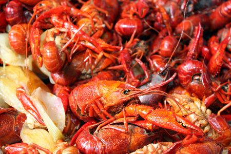 Boiled crawfish ready to be eaten