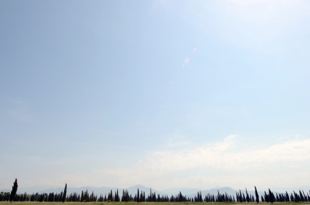 A field of cypress trees in Montenegro  A panorama of cypress trees with mountains in the horizon and sky above with some clouds  photo