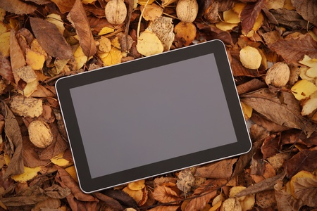 A picture of a modern tablet over leaves and copy space for your text photo