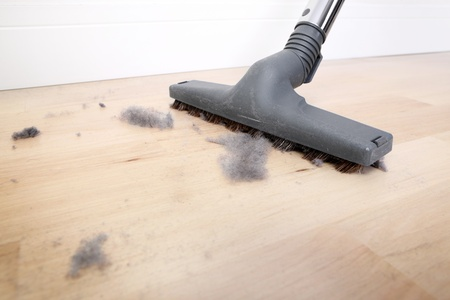 vacuum cleaning: A picture of a vacuum cleaning wooden floor covered with dust