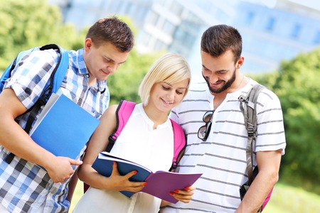 A picture of a group of students learning in the park photo