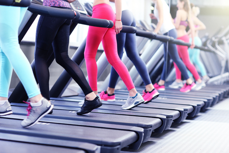 young friends: Group of fit women working out on treadmill in gym