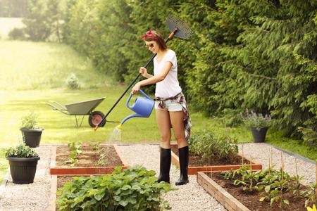 그녀의 정원에서 일하는 젊은 여성의 그림 스톡 콘텐츠