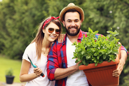 allotment: Picture of young couple working in the garden