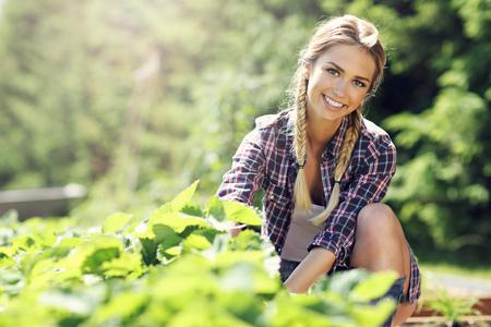 幸せな女の庭で新鮮なイチゴを収集 写真素材