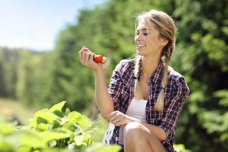 Mujer feliz recogiendo fresas frescas en el jardín Foto de archivo - 82236928