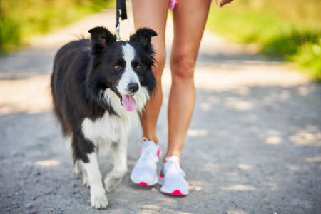 Midsection of woman strolling with her pet at leisure
