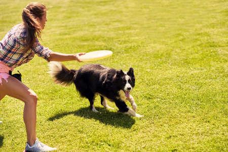 Border collie dog and a woman on an agility field Standard-Bild