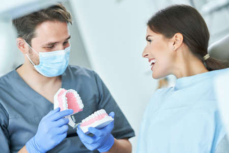 Male dentist showing jaw to woman in dentist office