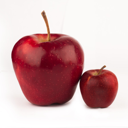 large: front view of large red apple next to a small one isolated on white background