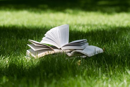 horizontal side view of many open books on top of each other standing on green grass in park in the shadows of the trees Stock Photo