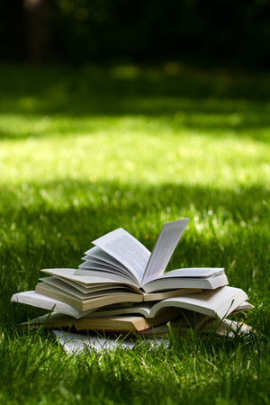 other side: vertical side view of many open books on top of each other standing on green grass in park in the shadows of the trees Stock Photo