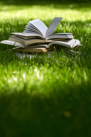 education: vertical side view of many open books on top of each other standing on green grass in park in the shadows of the trees Stock Photo