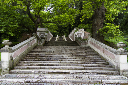 front view perspective of ancient stone stairs covered in moss climbing up in a beautiful green forest garden park