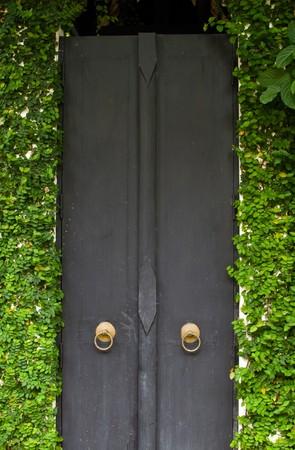 close-up image of ancient doors ,Thailand photo