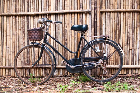 old classic bicycle in front of bamboo fent photo