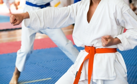artes marciales: karate